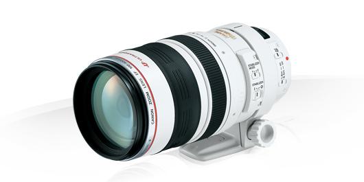 Canon EF 100-400mm f4.5-5.6L IS II