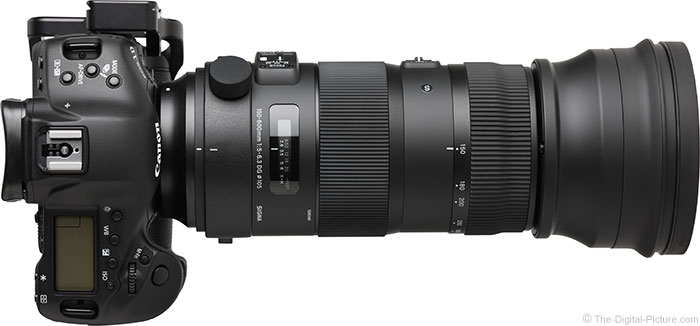 Sigma-150-600mm-Sports-Lens-review2
