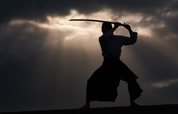 Robbie my Samurai
