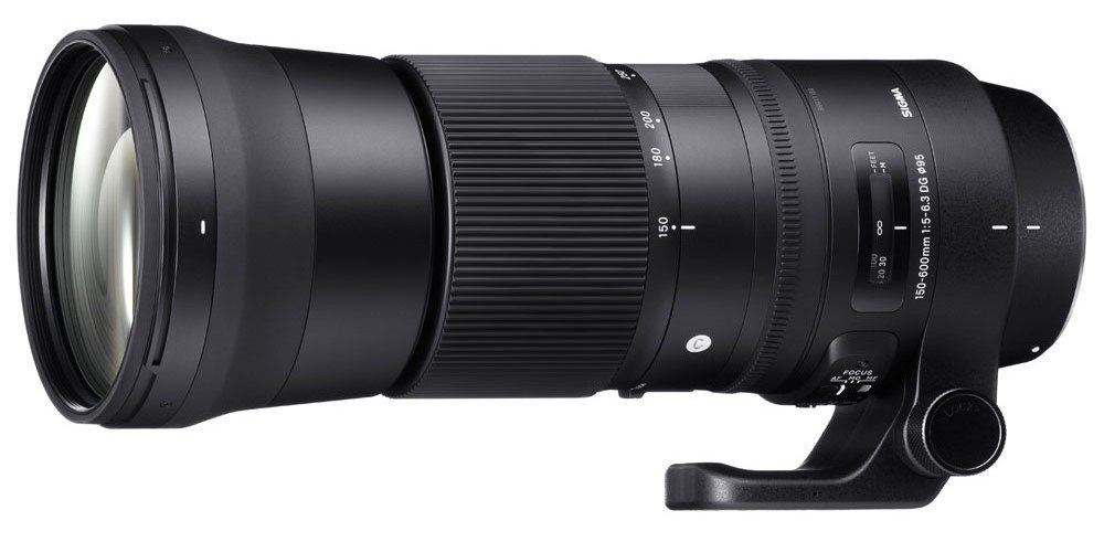 Sigma 150-600 contemporary lens
