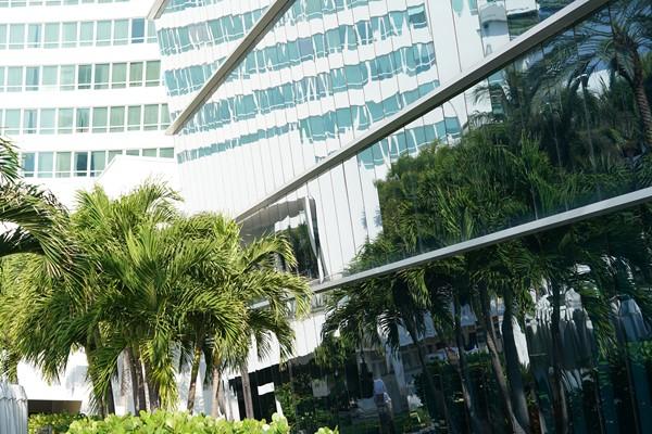 Sony FE 85mm F1.4 GM lens sample images9