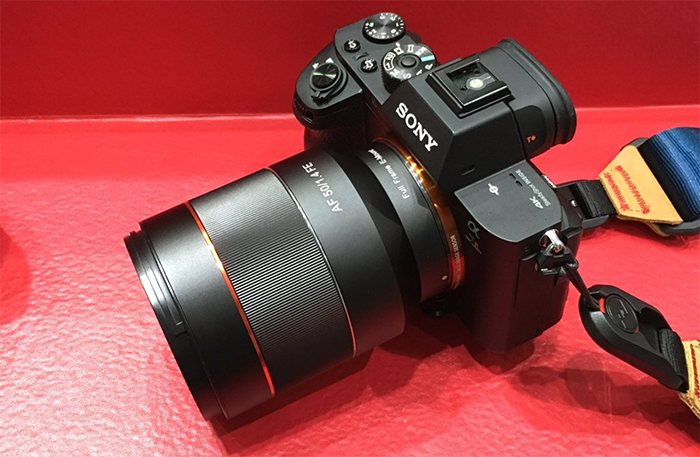 Samyang FE 50mm lens on Sony a7R II