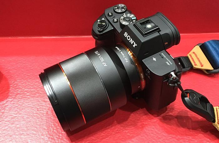 Samyang FE 50mm lens on Sony a7R II