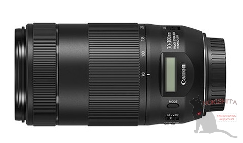 caon-ef-70-300-is-ii-usm-lens