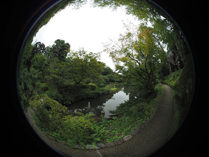 entaniya-250-fisheye-lens-images