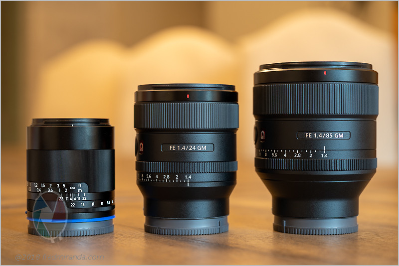 Sony FE 24mm F1.4 GM lens review
